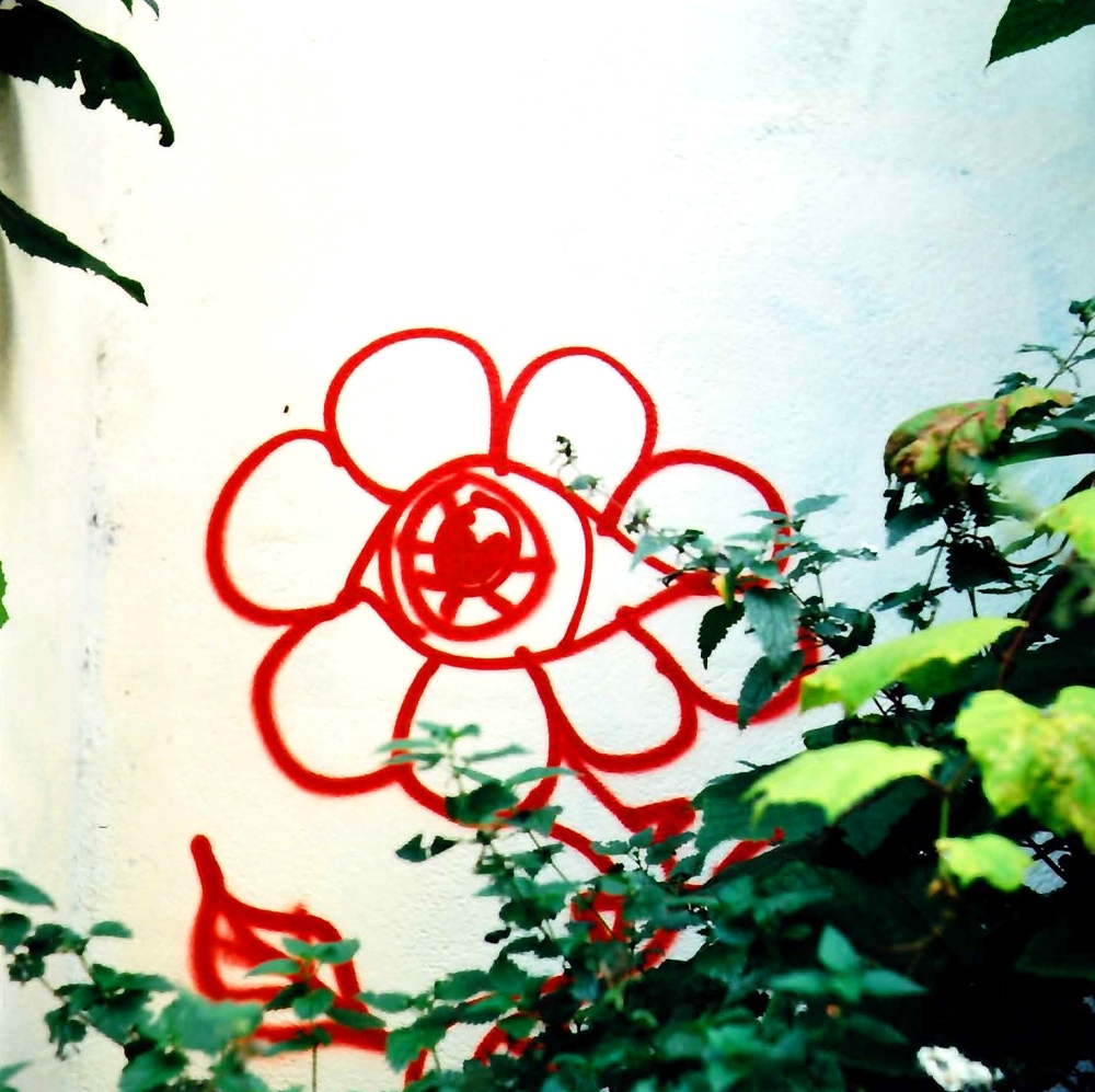 Grafitti flower